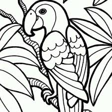 Small Picture parrot coloring page Jungle Parrot Coloring Page 300x300jpg