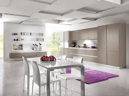 flat panel cabients and coffered ceiling modern beige flat panel cabinets coffered ceiling modern contemporary kitchen