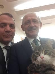 CHP'nin temsilcisi kedi Şero olacak