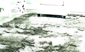 cream fluffy rug large cream rug white fluffy rug large plush area rugs black cream us large cream rug cream fluffy area rug