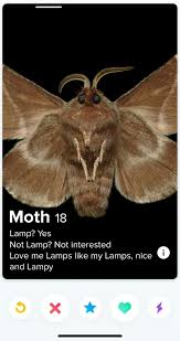 Moth Memes 19 Billy Mays Wet Hole Pinterest