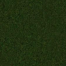 seamless dark grass texture. Textures Seamless Dark Grass Texture A