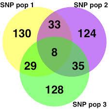 R Venn Diagram Ggplot2 14 Venn Diagramm The R Graph Gallery