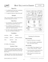 Resume Worksheet 100 [ Parts Of A Resume Worksheet ] A Detailed Lesson Plan On 82