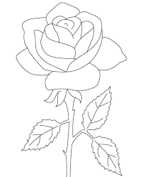 Small Picture Flower of rose coloring pages ColoringStar