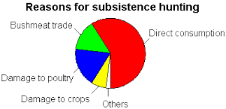 Beginners Statistics Introduction With R Pie Chart