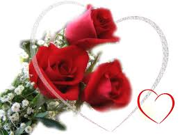 Roses Flowers Wallpapers 50 Beautiful Red Rose Images To Download