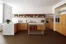 African Mahogany Kitchen contemporary-kitchen