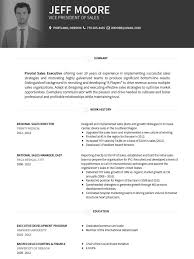 Cv Resume Template Mesmerizing CV Templates Professional Curriculum Vitae Templates