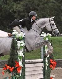 Patricia Griffith Dominates the $5,000 Devoucoux Hunter Prix | Horses Daily