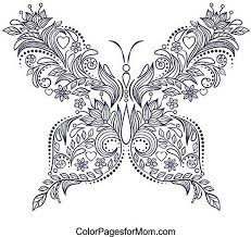 Small Picture Butterfly Coloring Pages Pictures Of Photo Albums Coloring Pages
