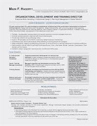 Mba Resume Sample Example Mba Application Resume Sample Application