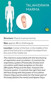 Marma Chart Marma Points Of The Feet The Ayurveda Experience Blog