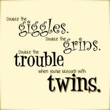 Twin Sister Quotes. QuotesGram via Relatably.com