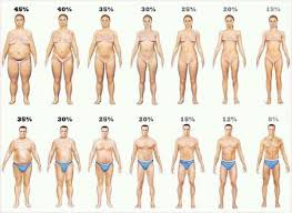 How To Find Out Fat Percentage Check Your Body Fat Percentage Online Body Fat Percentage