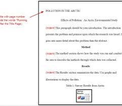 Apa Format Essay Example Examples Pdf Persuasive Psychology