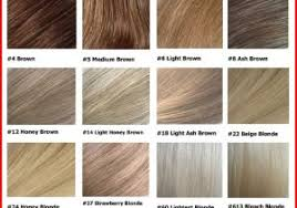 Aveda Color Chart 2018 Brown Hair Colour Online Charts Collection