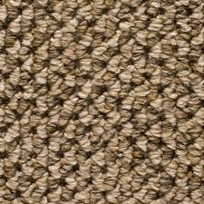 home decorators collection carpet sample sutton color quebec