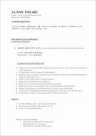 Description Of A Cashier For Resume Gorgeous Cashier Job Duties For Resume Fresh Resume For Cashier No Experience