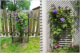 Such an economic way to obtain trellis for your garden. Collect crib sides  and use them as a trellis to support your plants. This will look unique too.