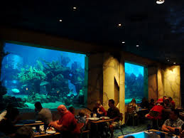 underwater restaurant disney world. Unique Disney Coral Reef Dining Room2 The Restaurant Has A Definite Underwater  With Underwater Restaurant Disney World AllEarsNet