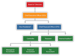 Accounting Position Hierarchy Chart Key Finance And Accounting Personnel