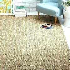 jute and chenille area rug natural captivating with pottery barn 8 x rugs fanc jute chenille herringbone rug