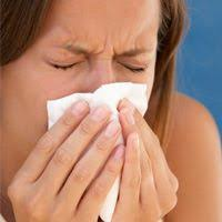 Indoor and Outdoor Allergy Differences | Everyday Health