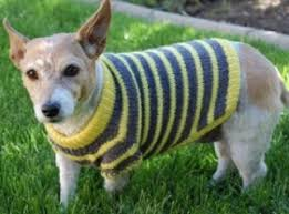 Free Knitted Dog Sweater Patterns Delectable Walkin' Ritzie Dog Sweater WalkinRitzieDogSweater [] 4848