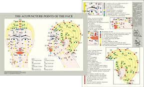 Facial Rejuvenation Cosmetic Acupuncture Points Chart Catalogue Baarle Com Uk