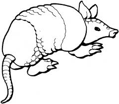 Small Picture Armadillo coloring page Animals Town animals color sheet