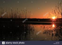 Summer outdoor background Nice lake in forest under sunset Stock