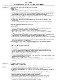 Lifecycle Marketing Manager Resume Samples Velvet Jobs
