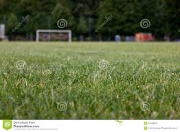 grass soccer field with goal. Exellent Goal Download Grass Soccer Pitch Stock Image Image Of Complex Pitch  42248535 Throughout Field With Goal E