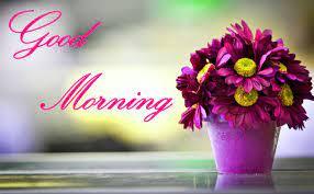 Good Morning Wallpapers - Top Free Good ...