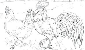 Farm Animal Coloring Pages Free Rooster For Adults Quotes Halloween