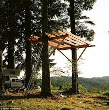 Nice Ideas Tree House Plans Two Trees For Interior Design Home Tree