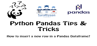 new row in a pandas dataframe