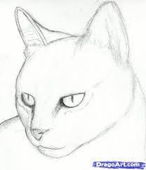 realistic animals to draw. Plain Realistic Image Result For How To Draw Realistic Animals Step By Kids On Realistic Animals To Draw O