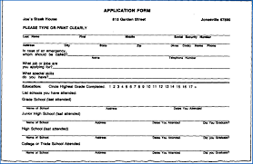 Delighted Biodata Job Form Pictures Inspiration Example Resume