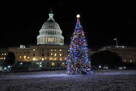 Dc Holiday Lights Tour Dc Holiday Lights Tours Usa Guided Tours Dc Top Rated