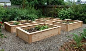 elevated garden bed. A Raised Garden Bed Elevated L