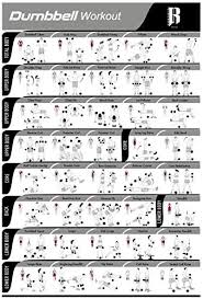 Laminated Dumbbell Workout Poster For Home Gym Made In Usa Total Gym Exercise Chart Fitness Posters To Build Muscle Weight Lifting And