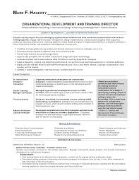 Project Manager Resume Summary Gorgeous Best Project Manager Resume Sarahepps