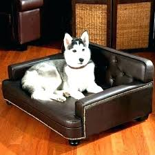 dog chewing leather furniture couch best couches for dogs sofa and are microfiber good chewed up