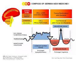 Scientific Chart Of German New Medicine Explore Article