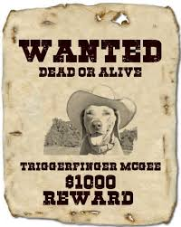 Wanted Poster Creator Make A Wanted Poster