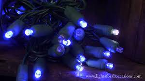 Blue Wide Angle Led Christmas Lights Led String Lights Blue Wide Angle Bulbs Cool White Twinkle