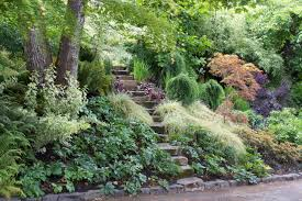 river rocks entry garden. Small Rock Garden Ideas Rocks In Japanese Gardens Buiding Backyard Designs Landscaping Design Patio That Will Put Your On The Map And Ebfcebaacdf River Entry