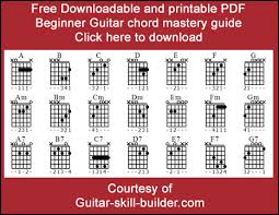 Electric Guitar Finger Chart Beginner Guitar Chords Basic Guitar Chords That Everyone Uses
